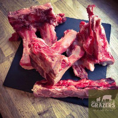 Stock bones1
