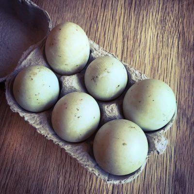 Duck Eggs1
